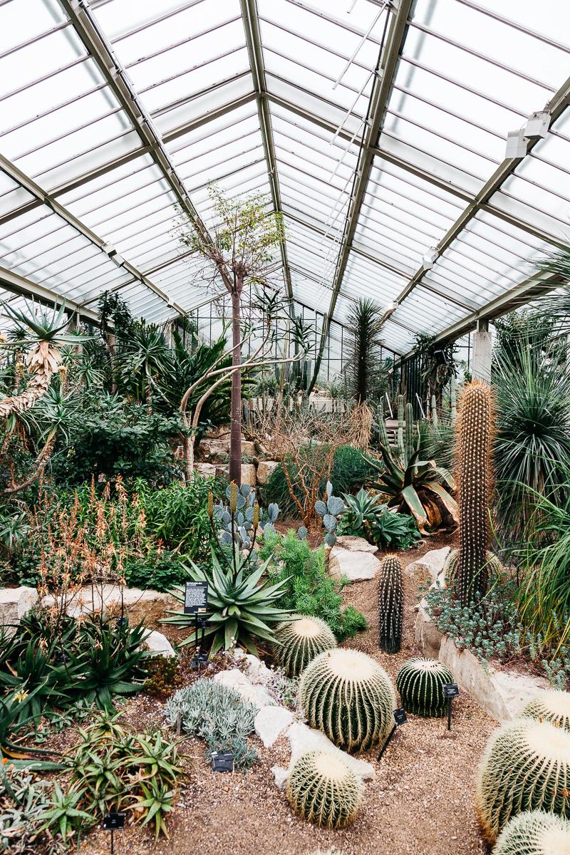 Kew Gardens 4.jpg