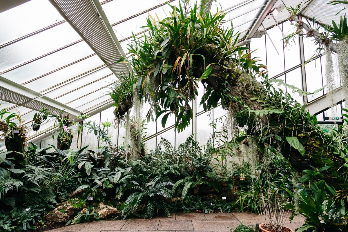 Kew Gardens 3.jpg