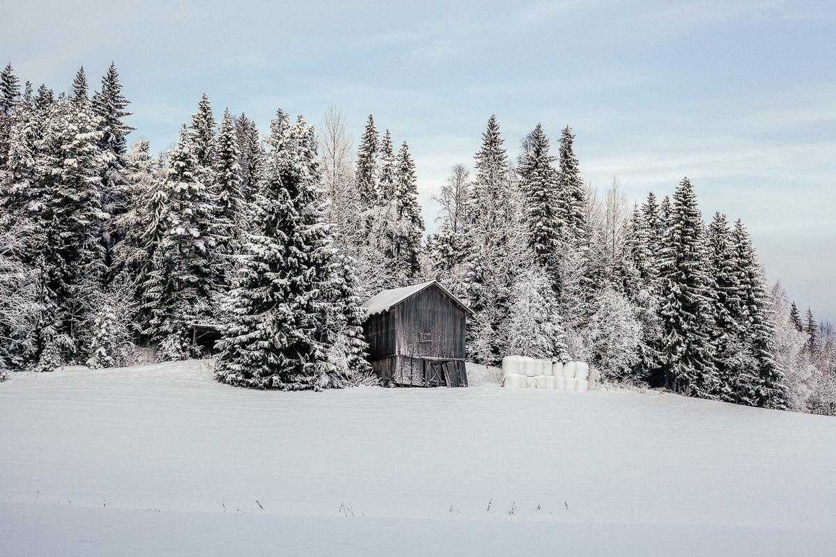 Sweden Snow 2.jpg