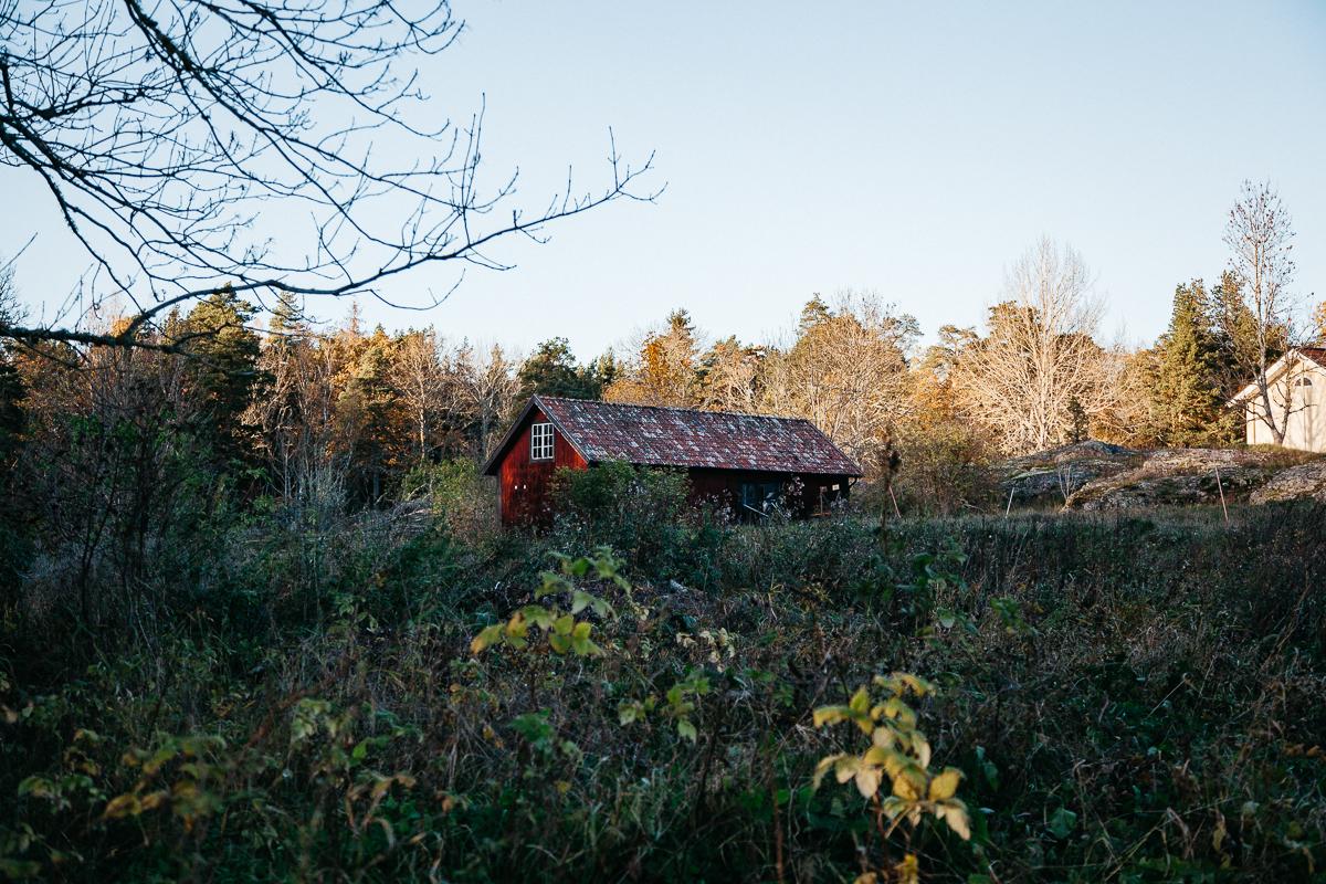 Swedish House .jpg