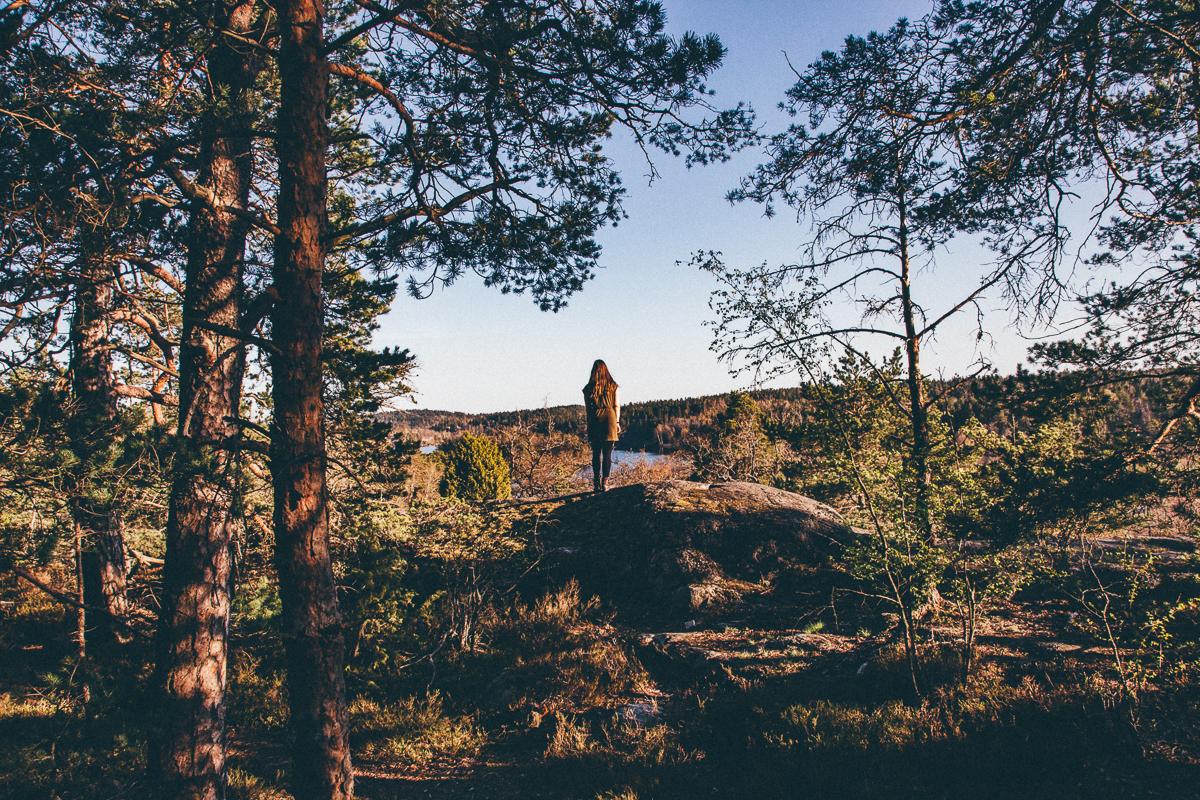 Sweden Hiking.jpg