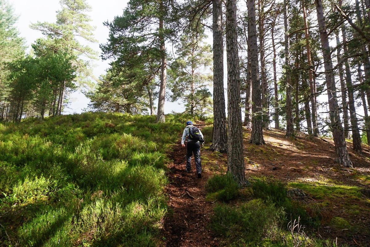 Hiking Cairngorms.jpg