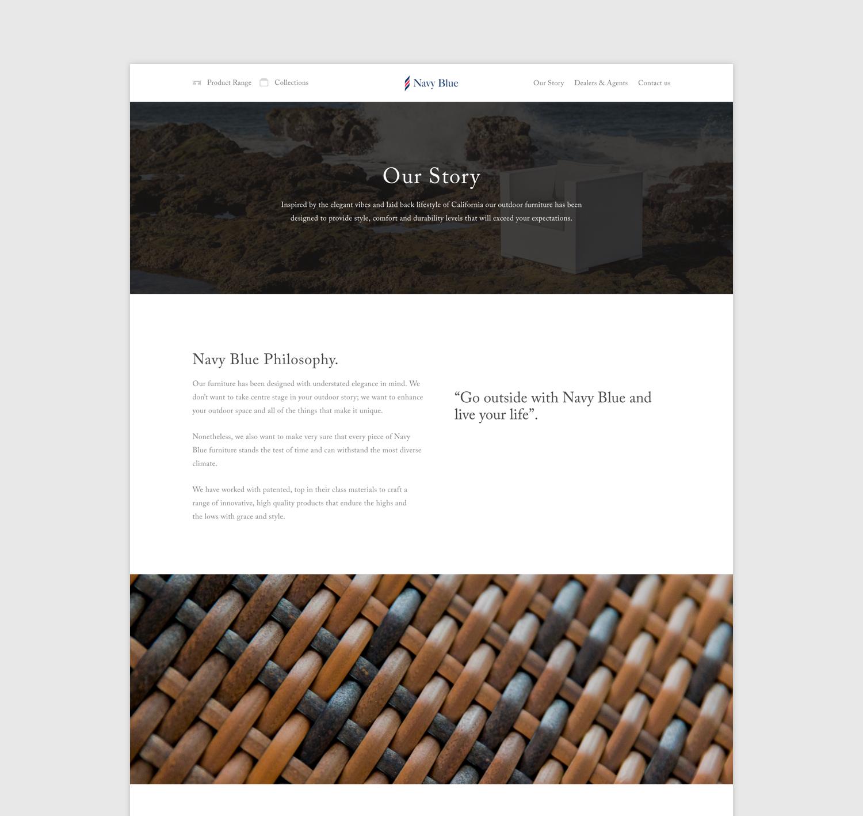Vrandin.com Diseño web squarespace.png