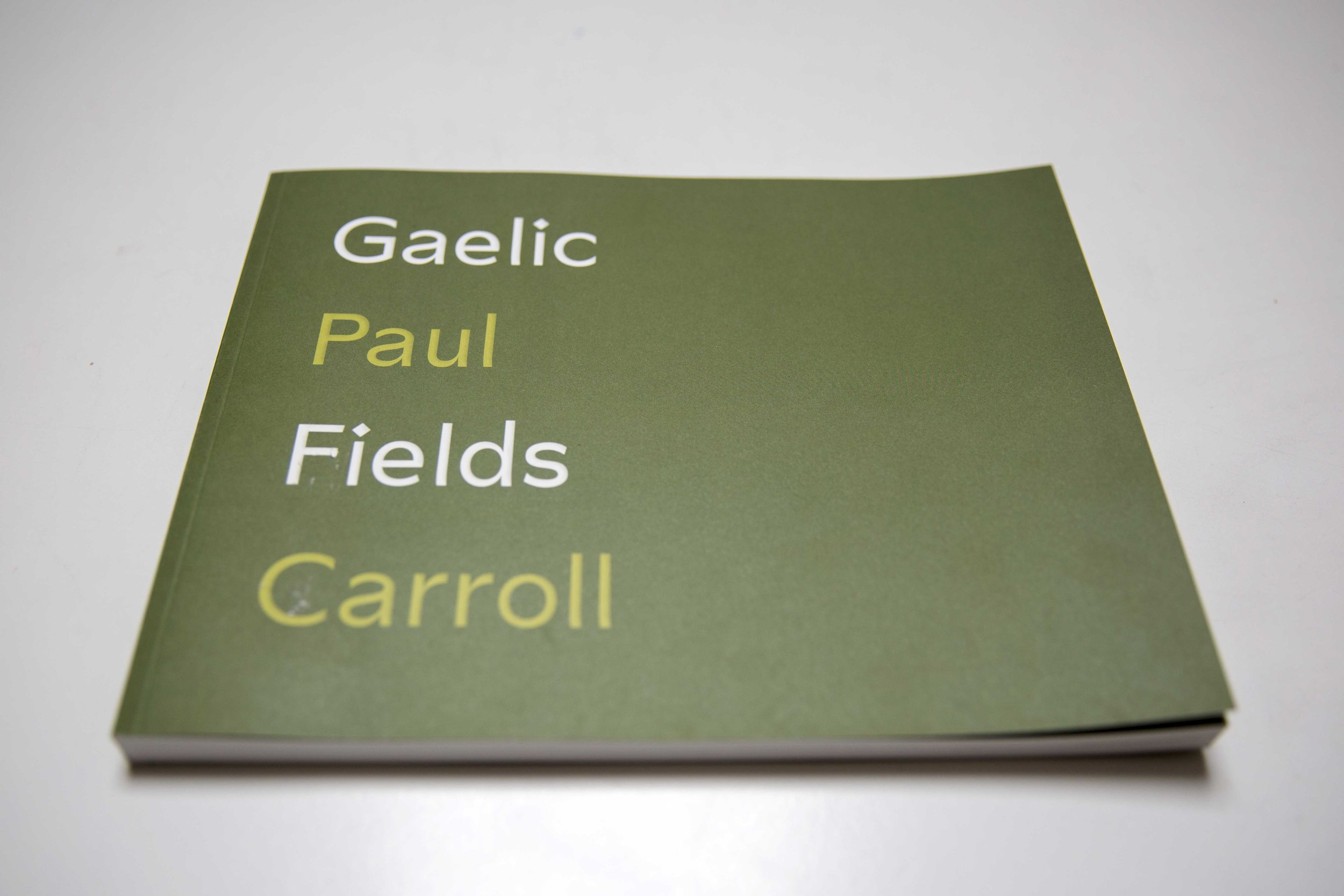 gaelicfieldsIMG_03_08_2019_3280.jpg