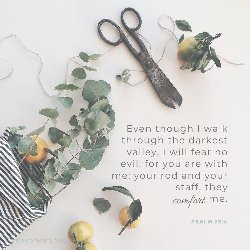 PSALM 23_4-3.jpg