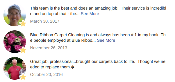 Professional_Carpet_Cleaning_Northern_VT.png