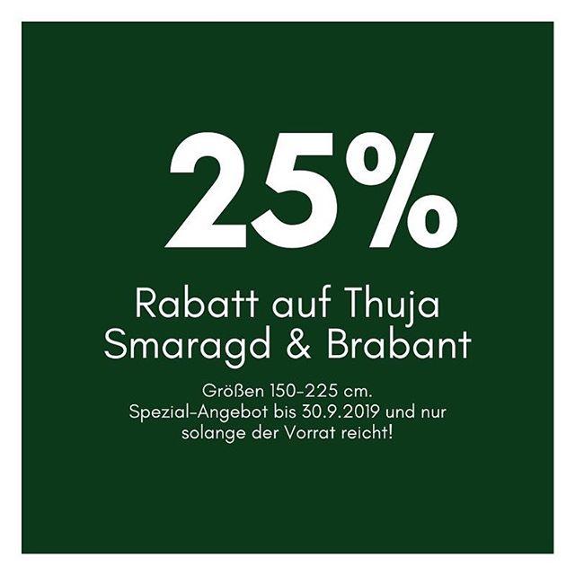 Pflanzsaison ist hier und wir haben ein spezielles Angebot! Jetzt 25% sichern! . . . #thuja #thujasmaragd #aichach #münchen #münchenliebe #hausbau #heckenpflanzen #gartenbau #gartenlandschaftsbau