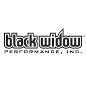 300-black-widow.jpg