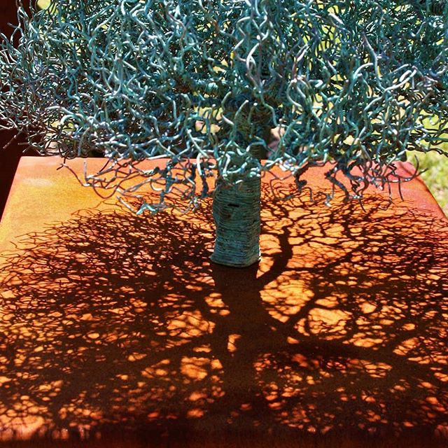 #shadowlines #coppertree #coppertree #arogallery