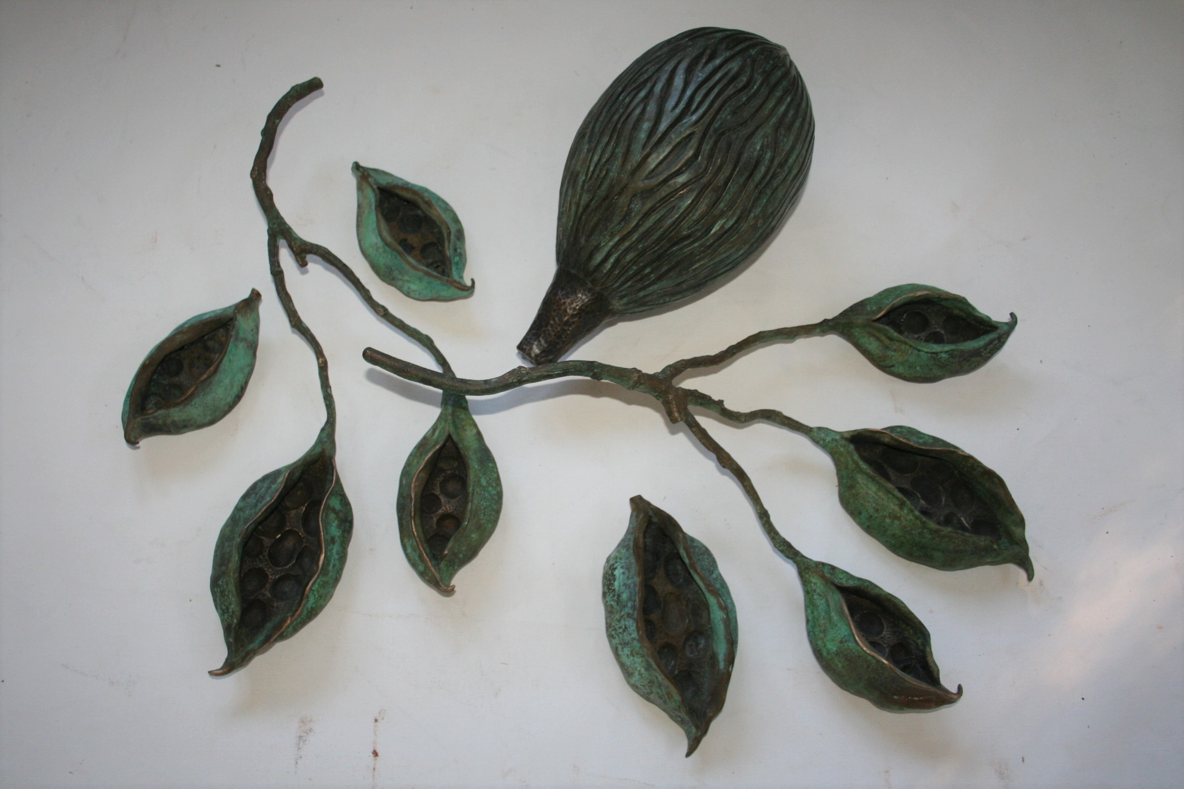 COLLECTION OF PODS