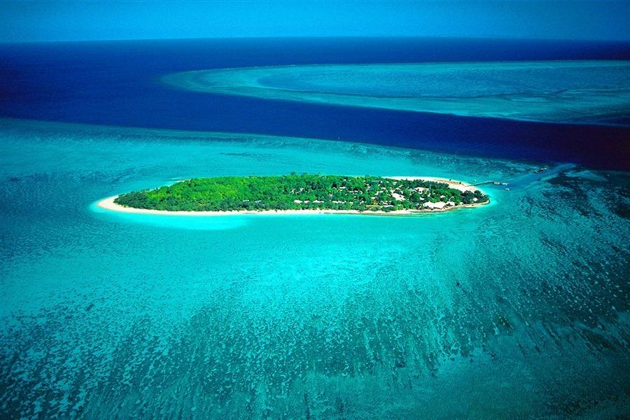 heron-island.jpg