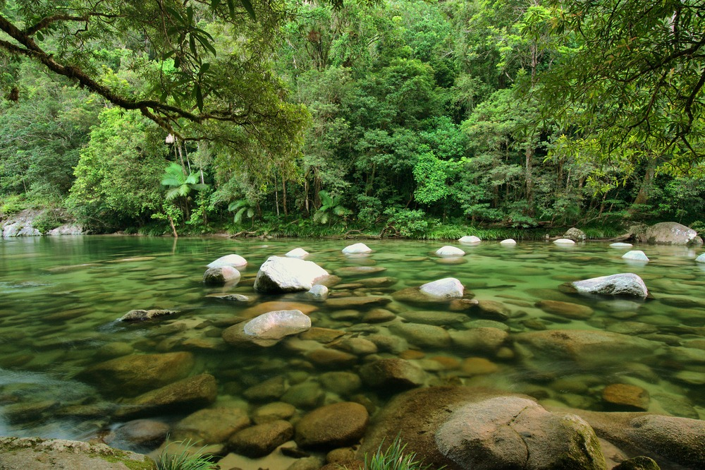 Mossman River, Daintree Rainforest