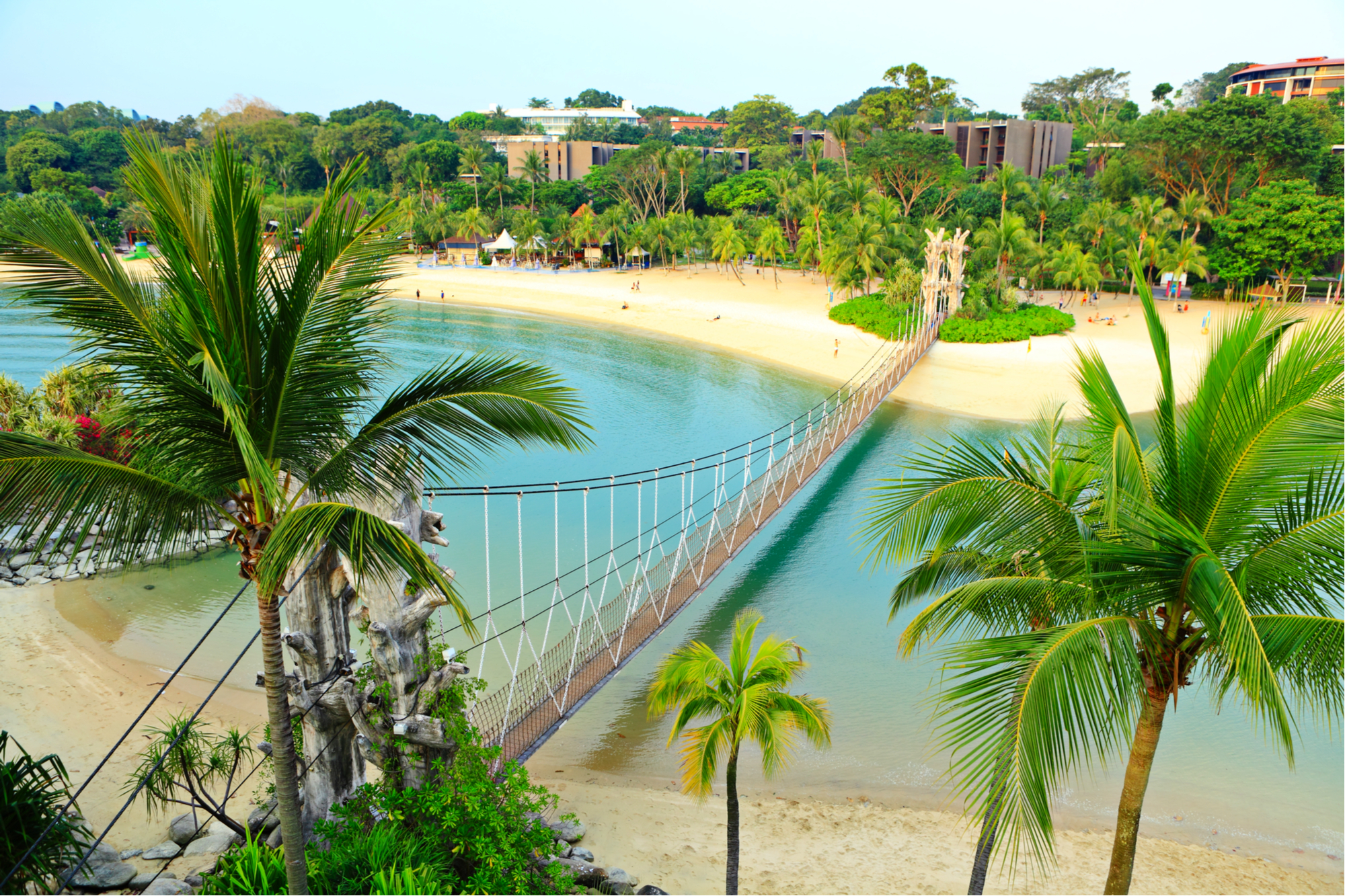 A beautiful lagoon surrounded by palm trees with a rope bridge crossing the water on Sentosa Island