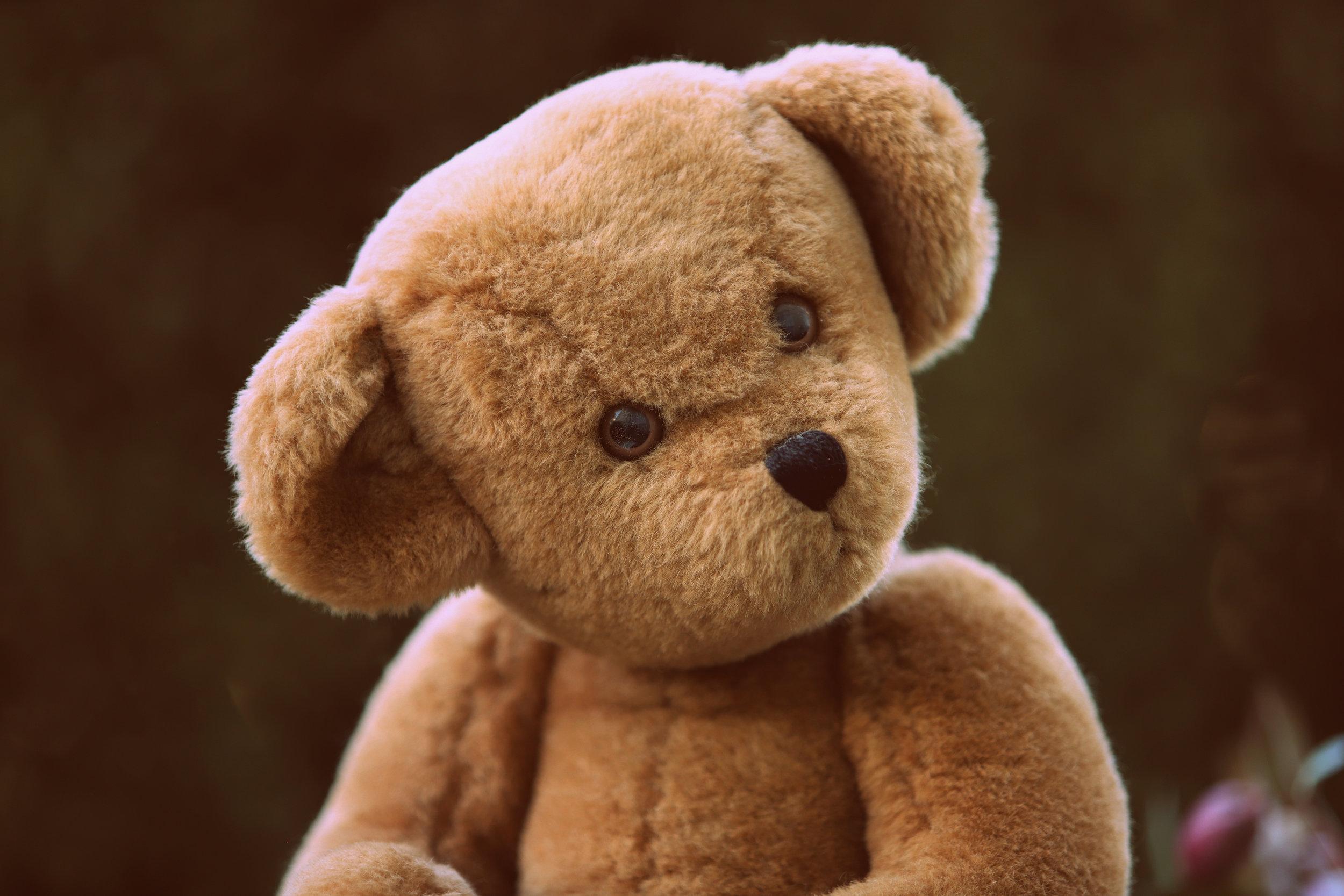 Teddy Bear Hospital -