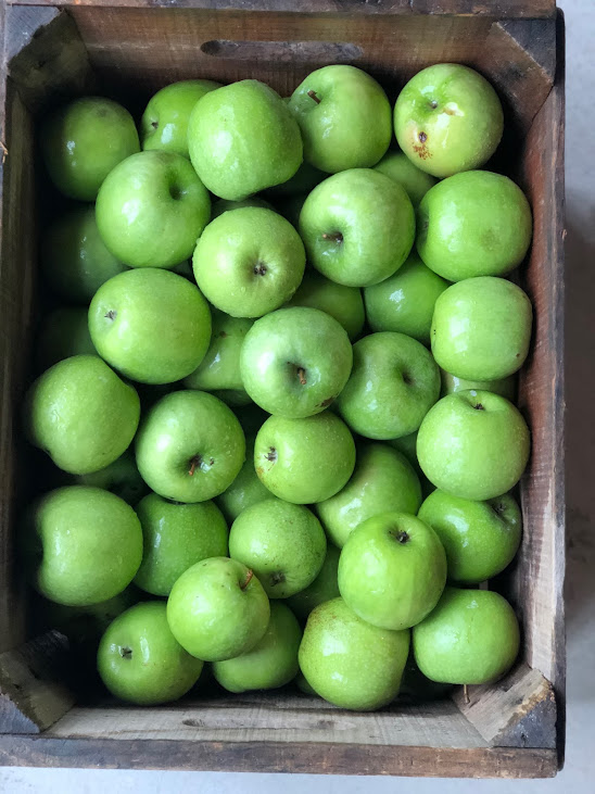 U-Pick Jamesport: Closed for the season. Apple Shed open for baked goods, Cider, and apples. Aquebogue: Mutsu while apples last. - Jamesport is open for picking Saturday/Sunday 10-4:30 pm September 14th through Columbus Day WeekendAquebogue is open for picking Monday - Friday 11:30-5pm closed Wednesday. September 23rd-Columbus Day Weekend