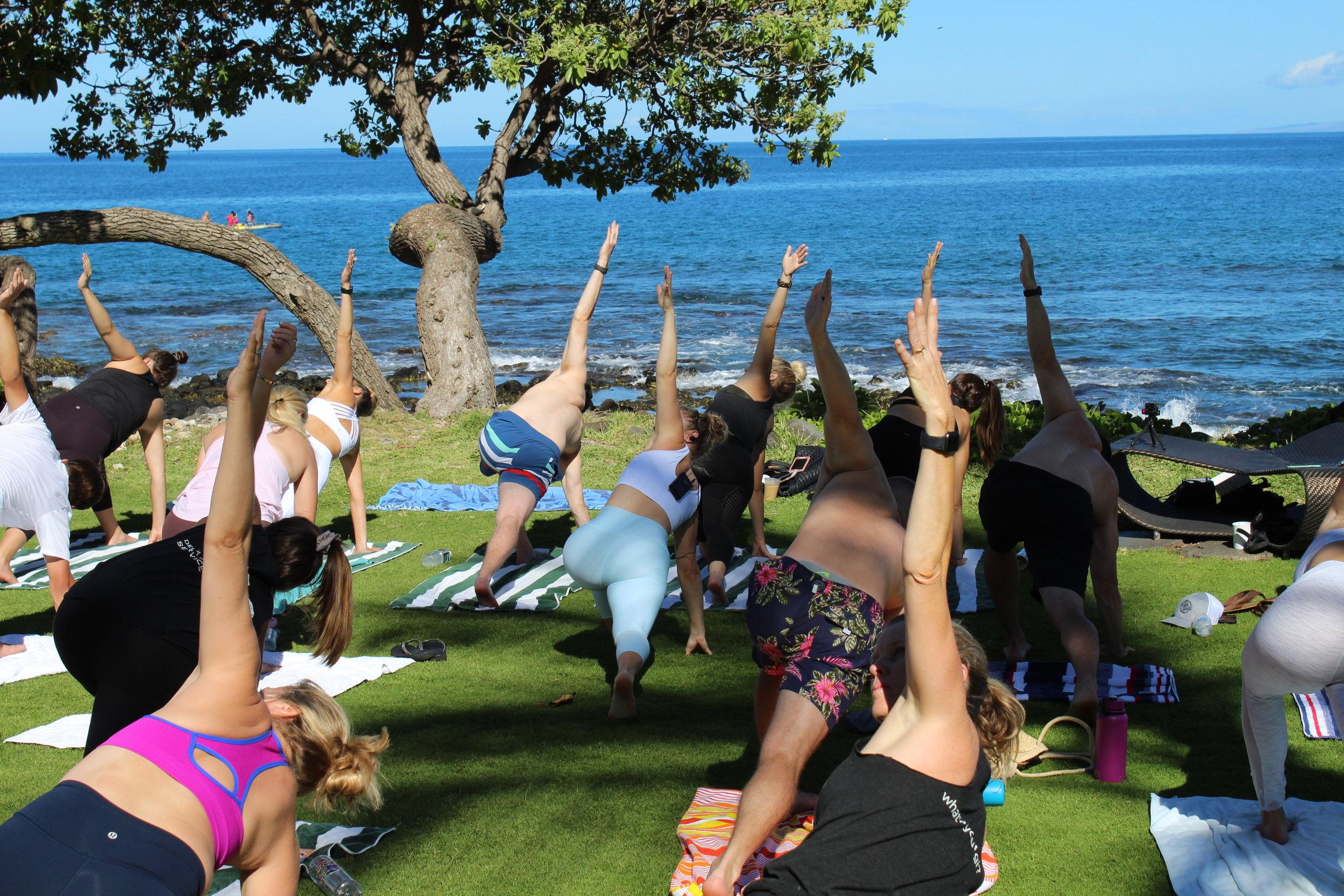 Melissa Oleson MSunn Yoga & Wellness Physical Therapist Holistic Healh Coach NW Dc Yoga.JPG