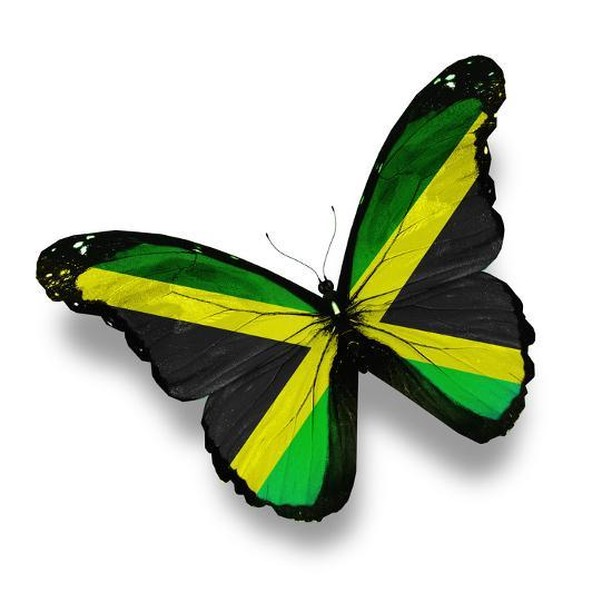 Happy Independence Day, Jamaica!!! * * * Fun facts about Jamaica: produces the most music per capita - has the most churches per square mile - was once a Spanish speaking country - supports equal rights for humanity - under Britain leadership rule, Jamaica became the leader in producing sugar * #jamaica #caribbean #kingston #independenceday #travel #facts #history