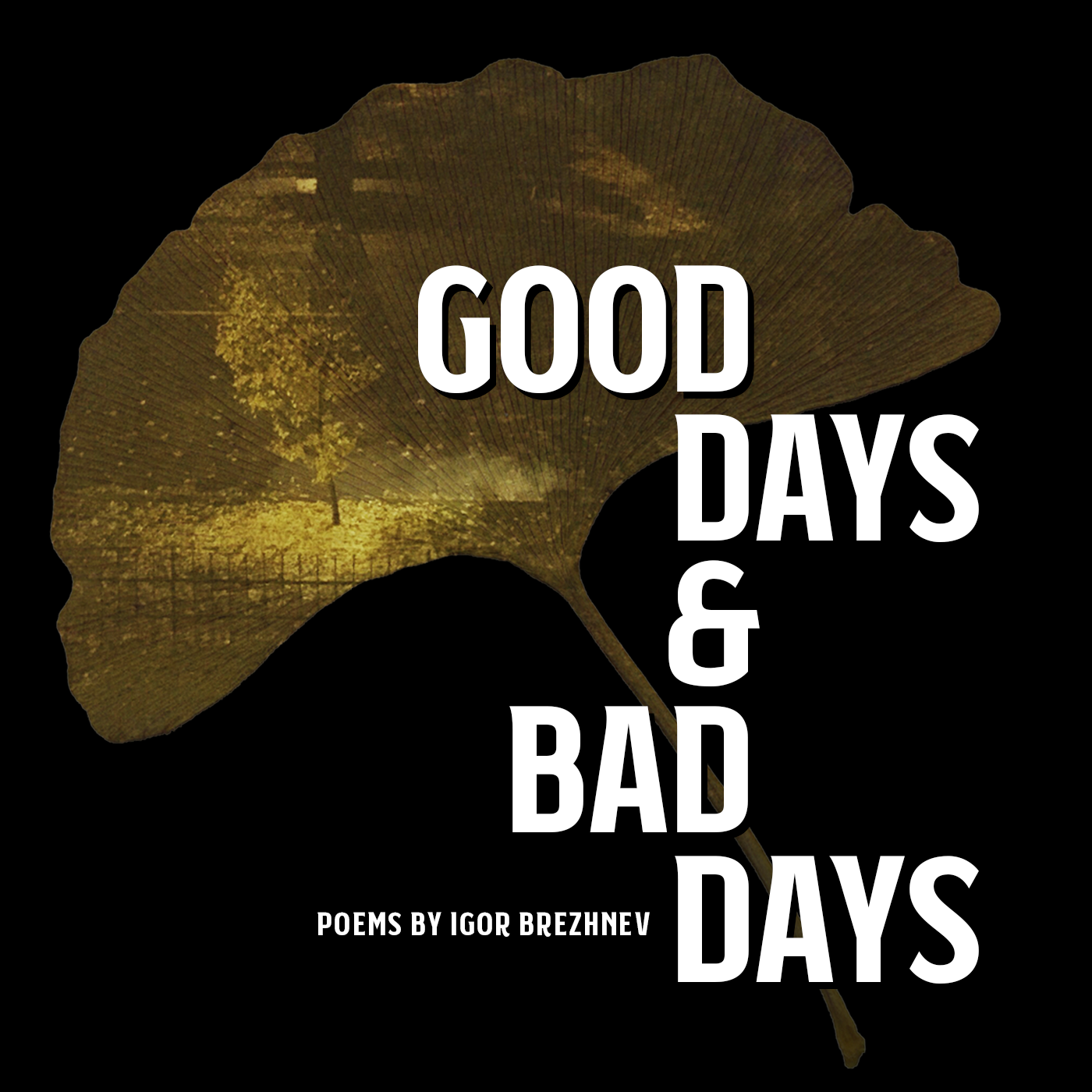 good-days-and-bad-days-cover.png