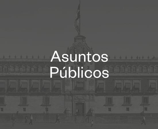 asuntos_publicos.jpg