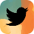 twitter_splash_sm.jpg