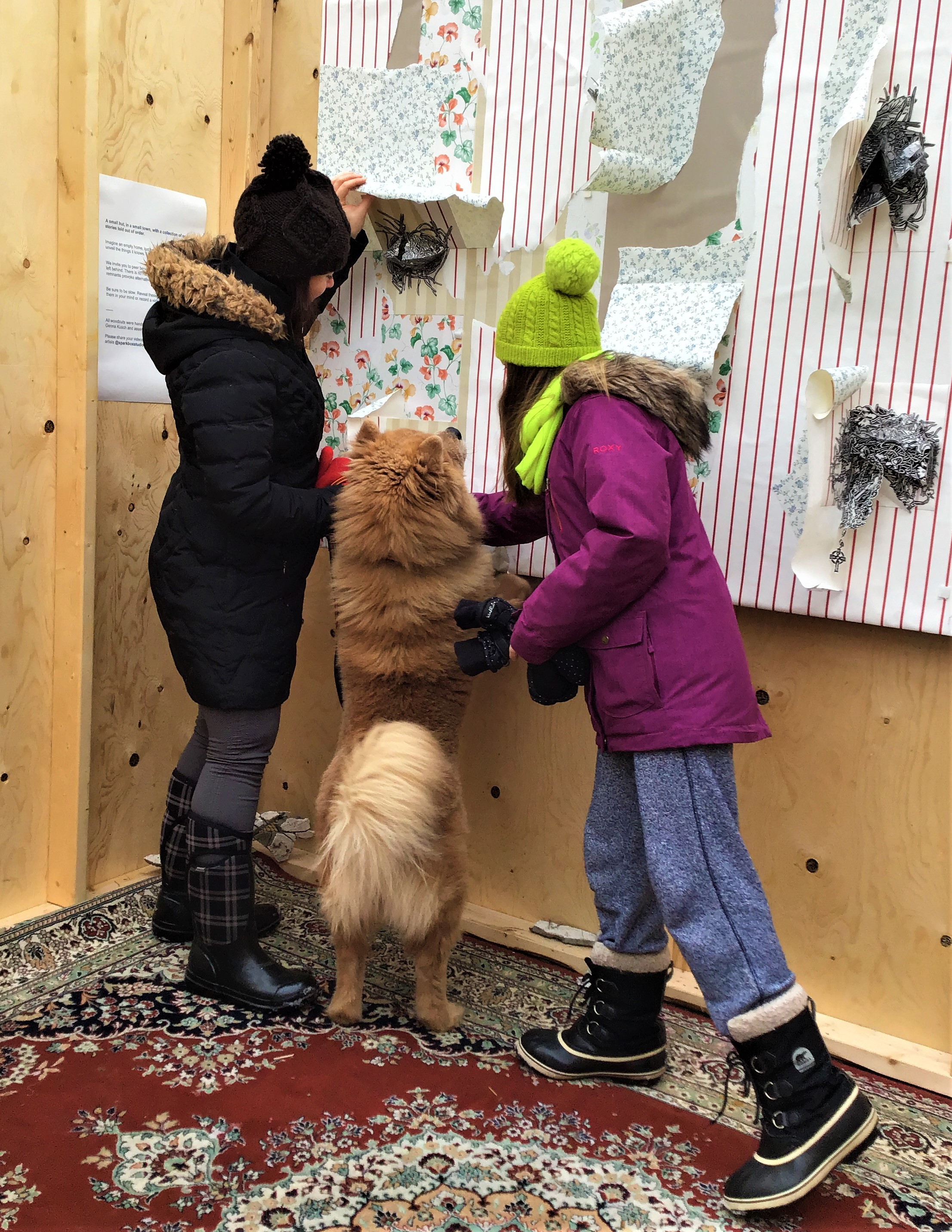 dogs and pop ups Chrissy Poitras.JPG