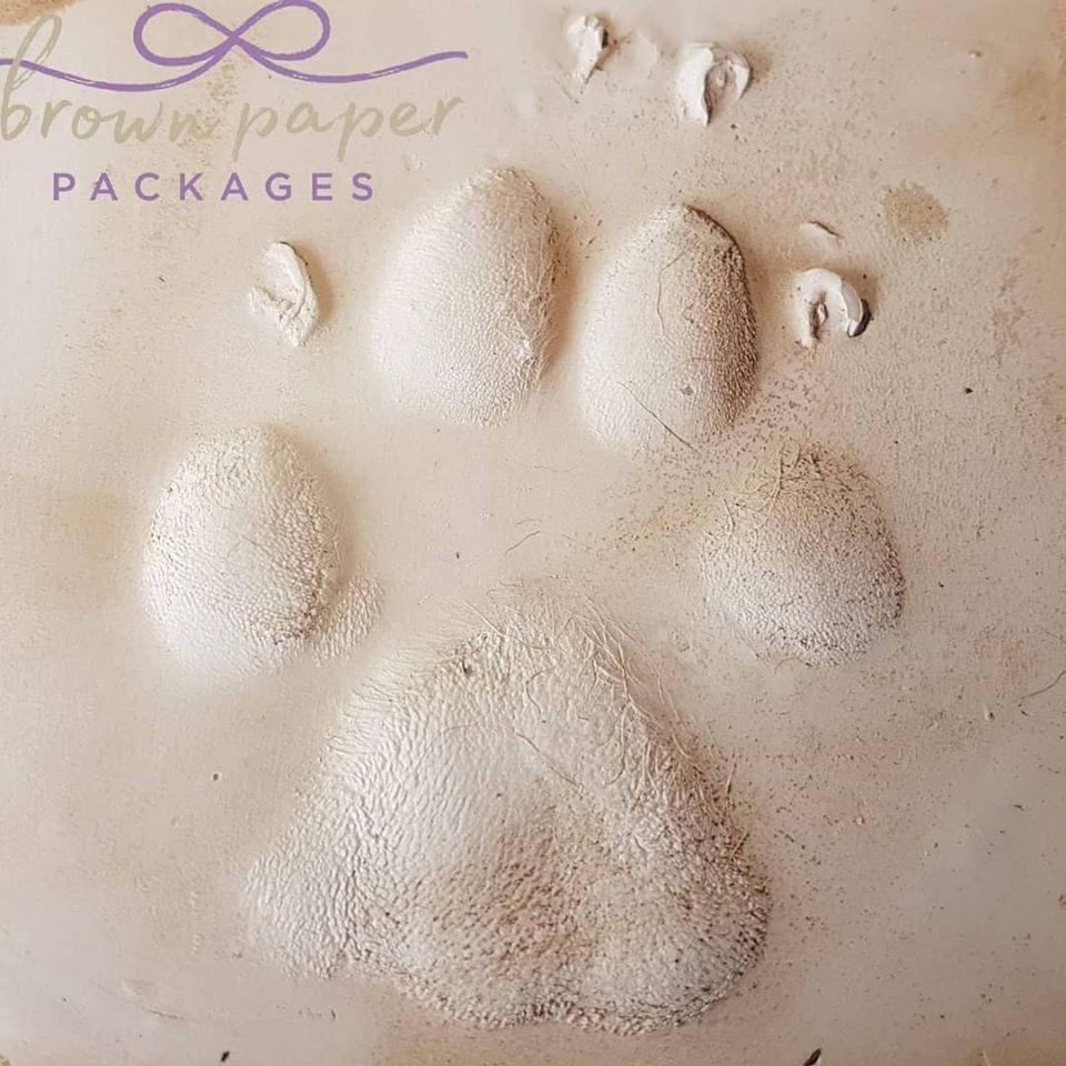 BPP dog paw print.jpg