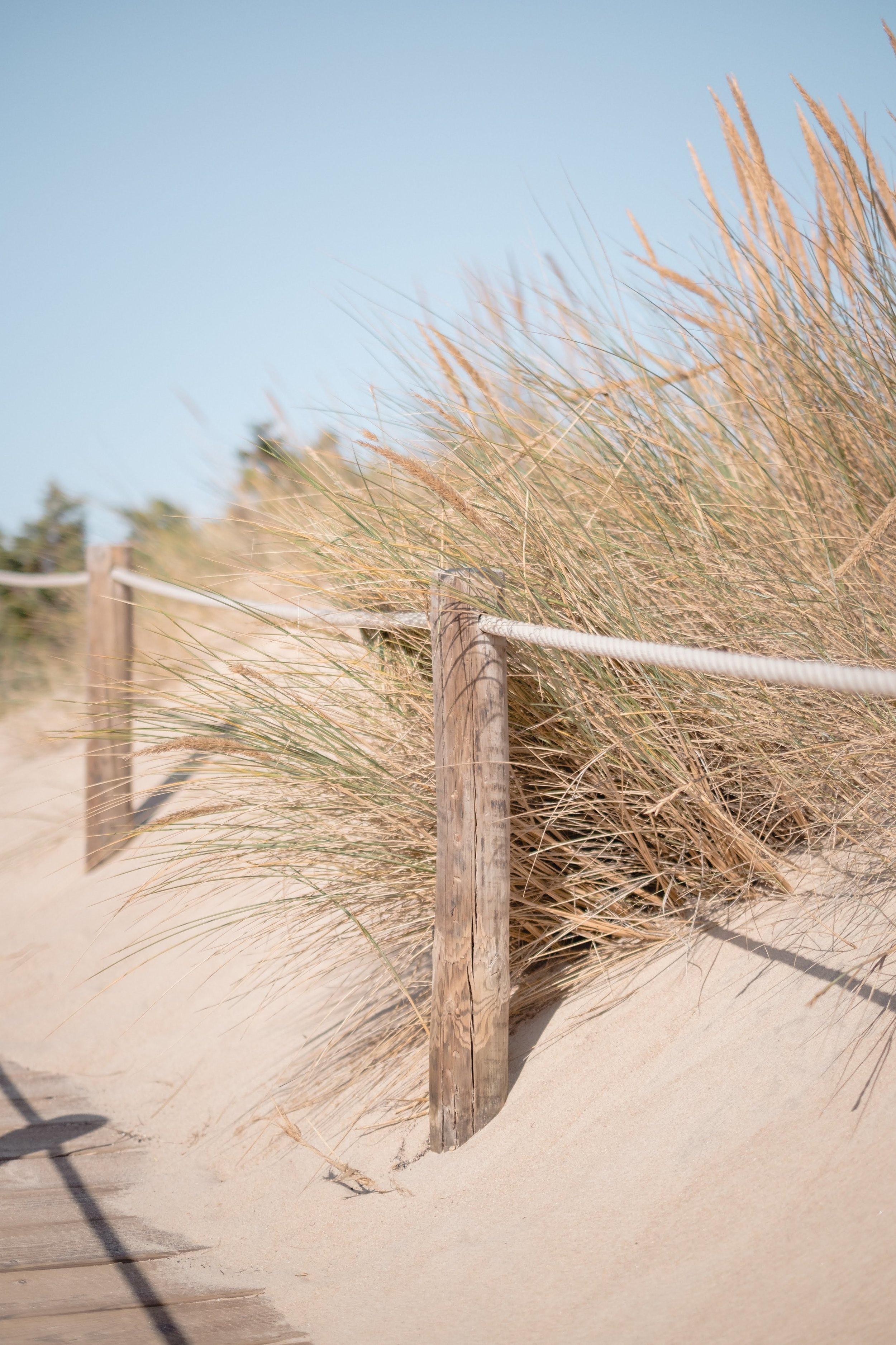 duna da cresmina
