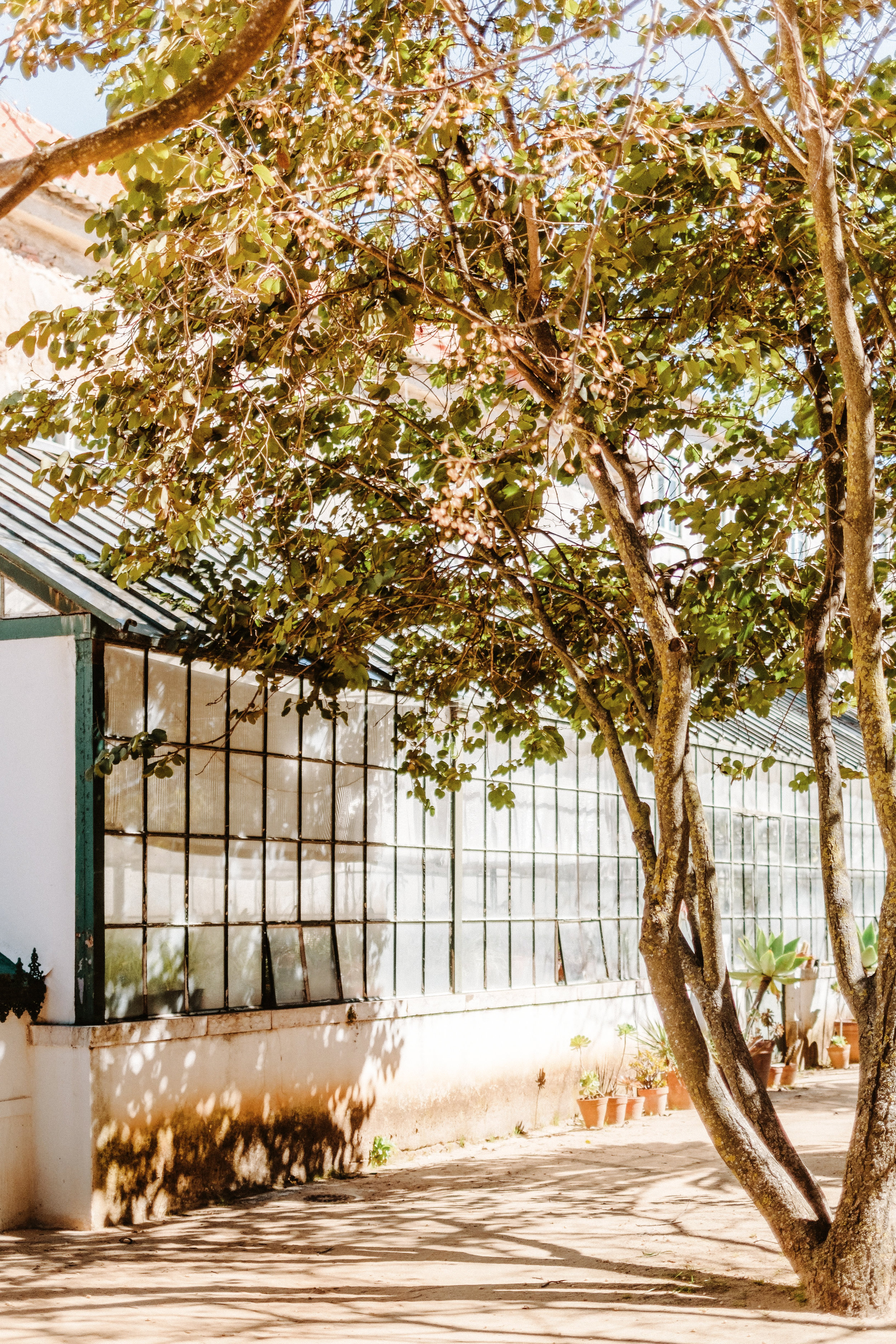 Ajuda Garden Lisbon