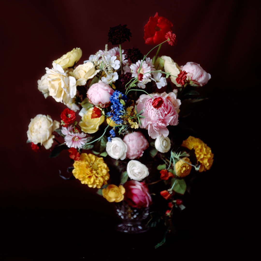 Brown Bouquet , 40 x 40 inches, archival pigment print, 2009