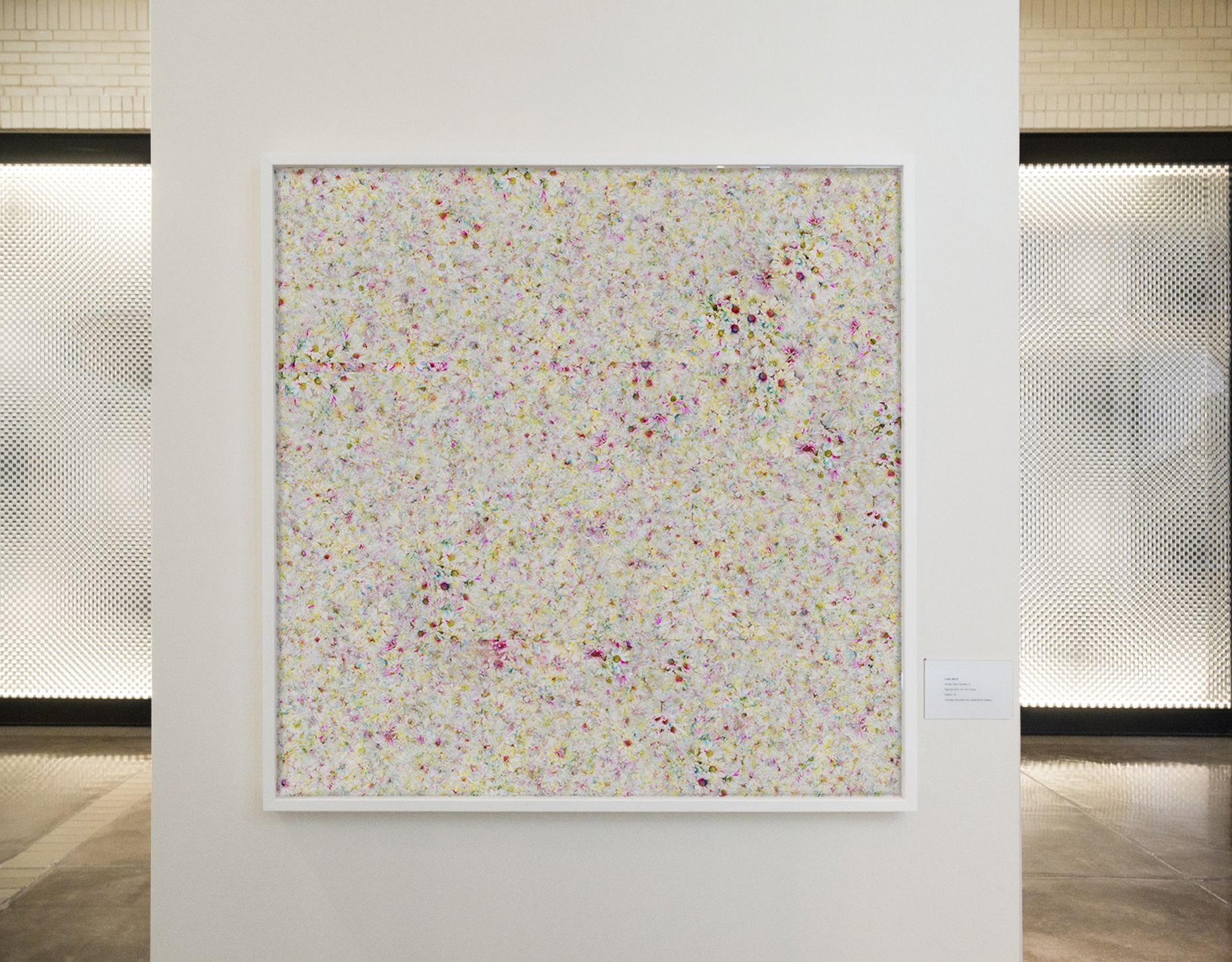 Installation view,  Flower Field Variation 3  in  Flower Power  exhibition at NorthPark, Dallas, TX, 2017