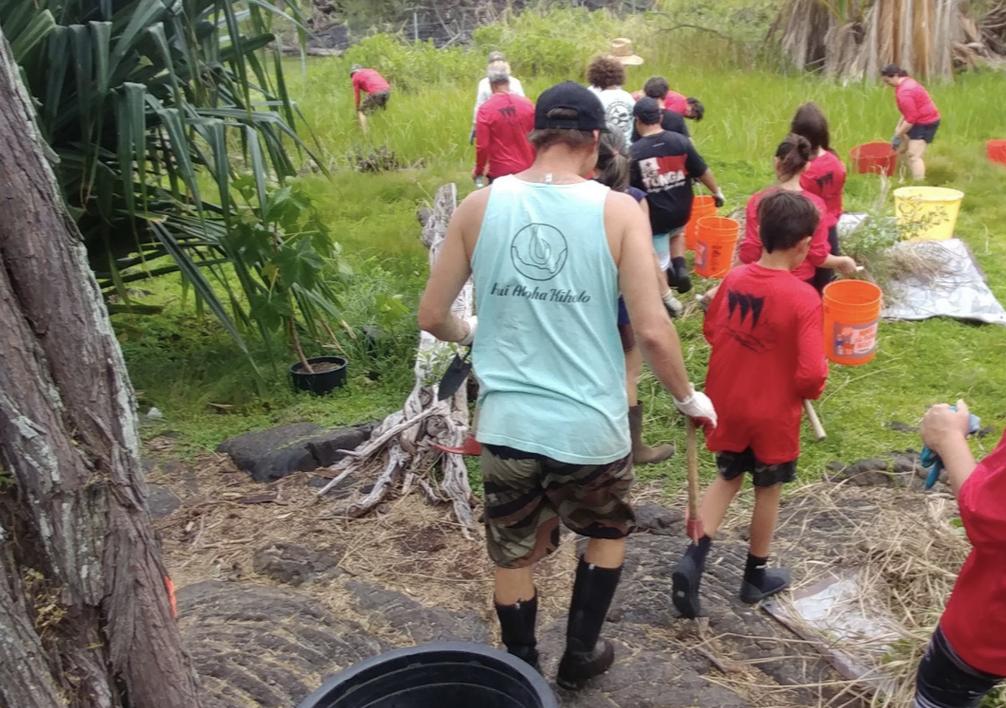 Waiaka`eu native plants Hawaii Kiholo dryland forest.png