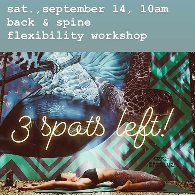 3 spots left!  more infos in bio-link of @roozyoga. email me (roozyoga@gmail.com) to reserve a spot! 💫