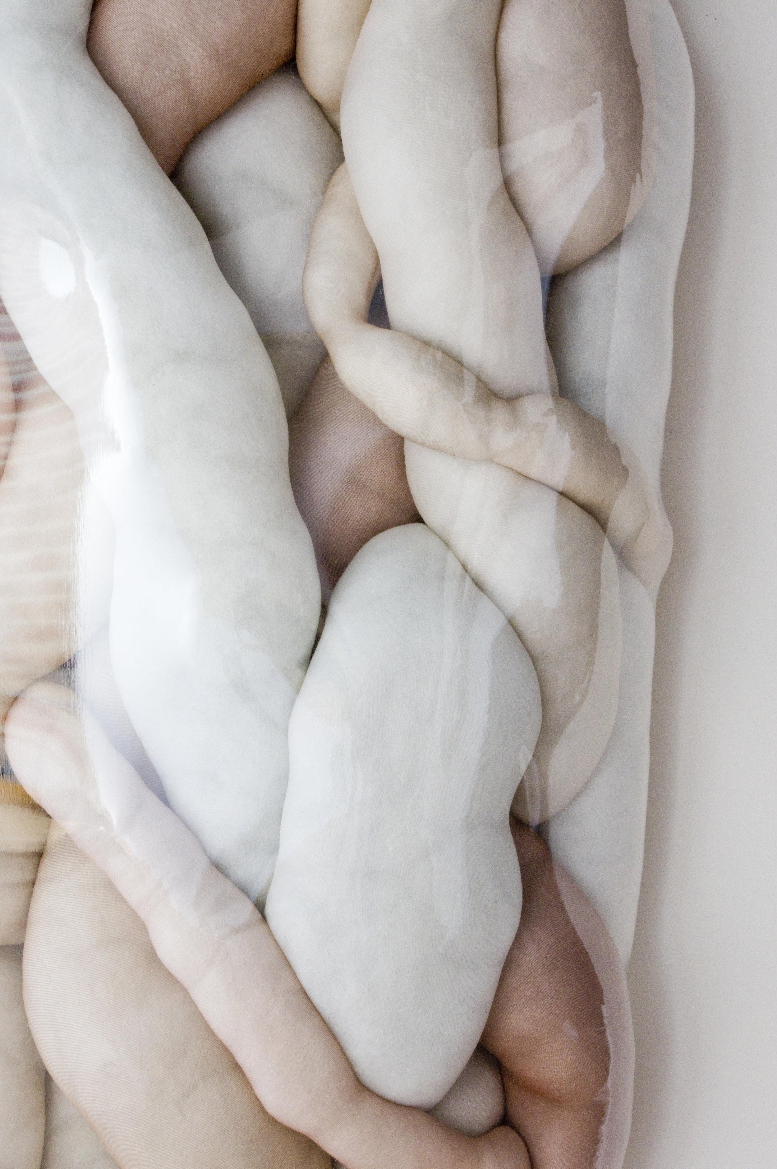 Soft Tissue, detail
