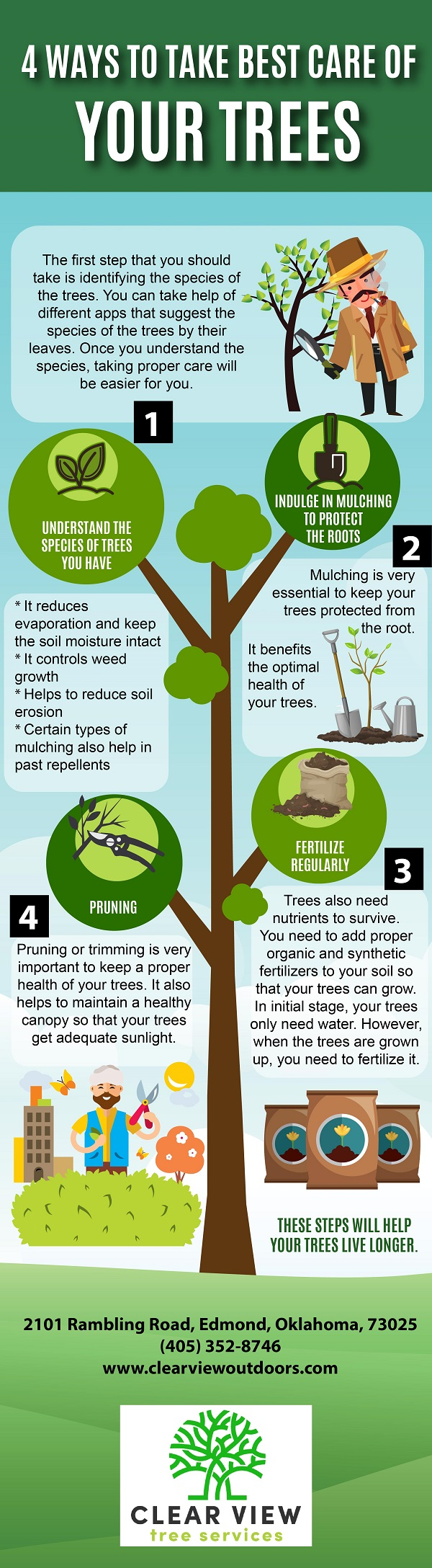 Four Ways To Take Best Care Of Your Trees Infographic Clear