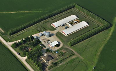 - Picture is a hog farm with austrees and evergreens surrounding there facility.