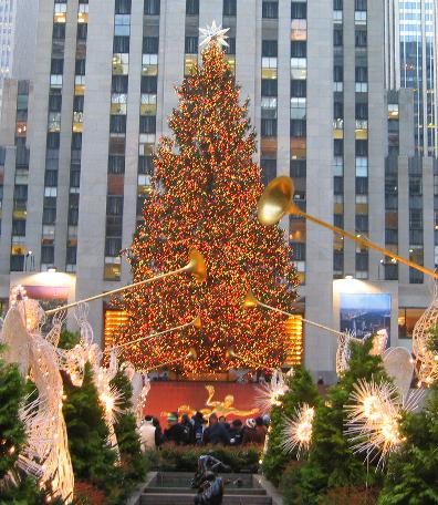 CHRISTMAS TREE  Every year at Christmas time, a tree is placed in the Rockefeller center in New York City. They look for the largest, most beautiful tree they can find. Year after year their favorite is the Norway Spruce. Its strong branches are able to hold up the thousands of lights and ornaments, and being outside the needles stay on the tree for a long time. The tallest tree ever used was a 100-foot Norway Spruce from Killingworth, Conn. in 1948. After X-Mas the tree is cut into lumber and used to build a house. For 2018 the tree was 75 ft tall and 47 ft wide and weighed 12 tons
