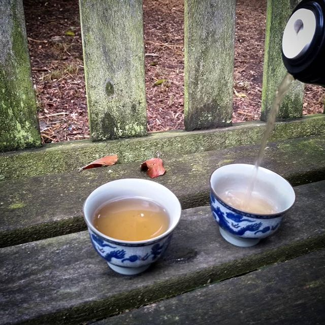 Tea break  #tea #oolongtea #park #parklife #peace  #harmony #heavenmanearth #taiji #taichi #richmonduponthames #kew #dissolve #london #uk