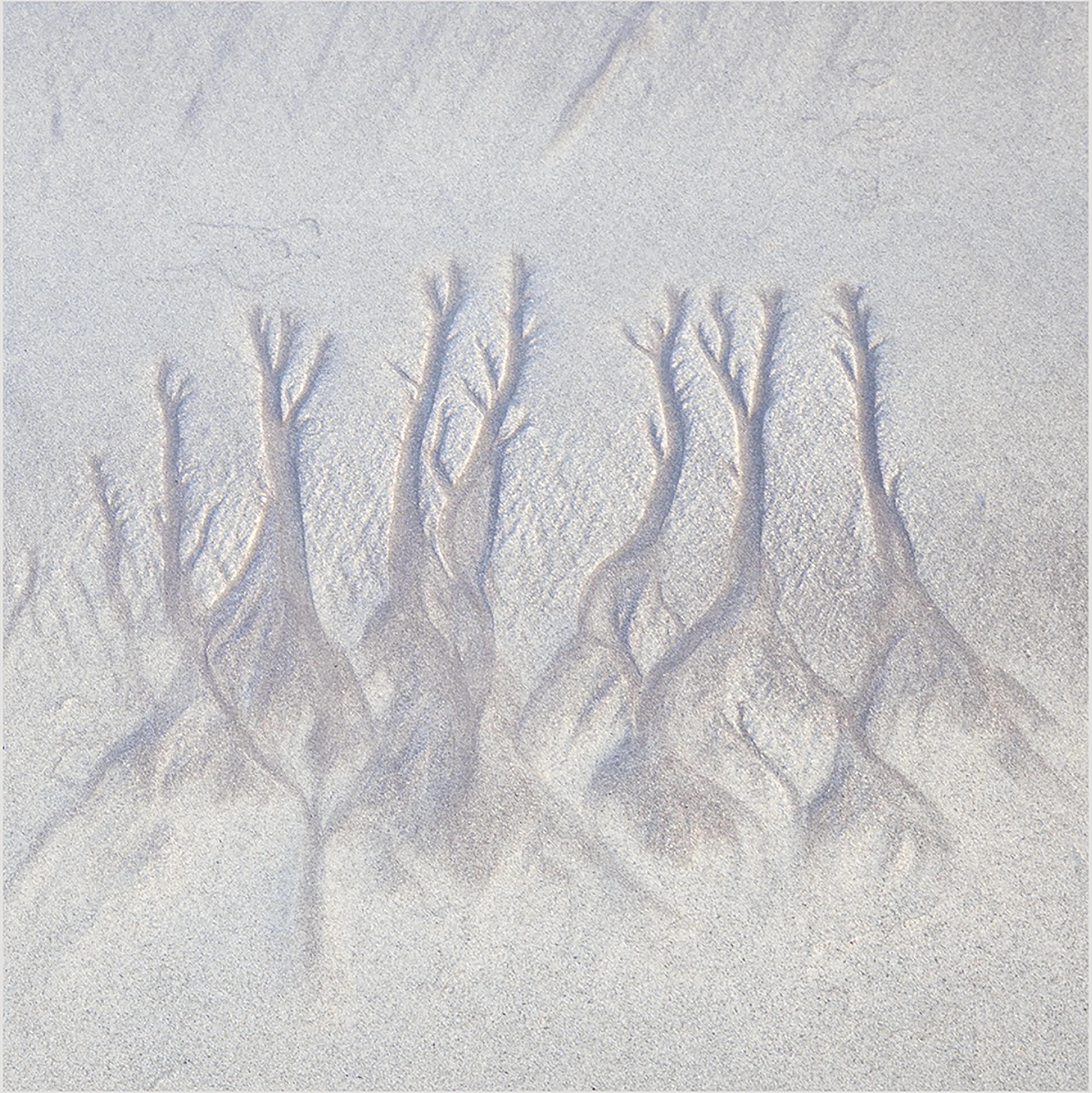 Sand Pattern 3.jpg