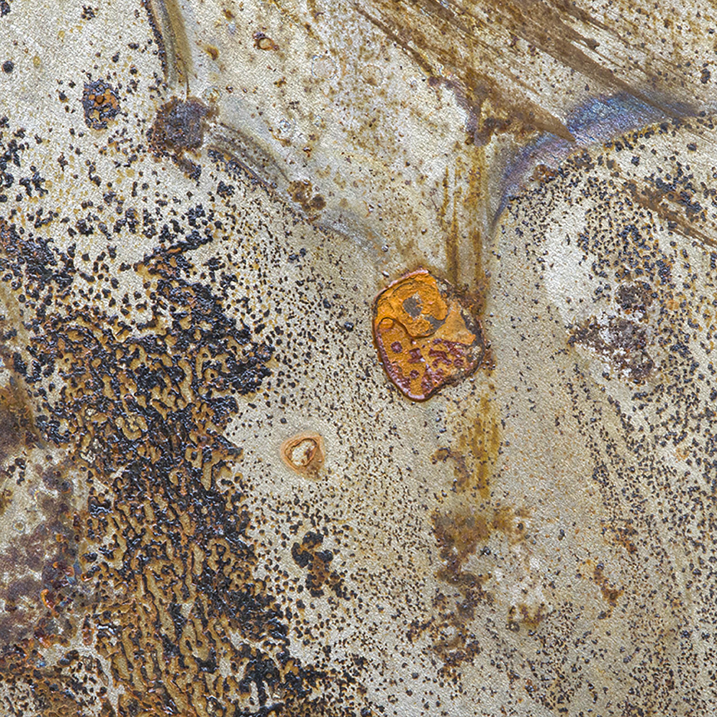 Rust Abstract 4.jpg
