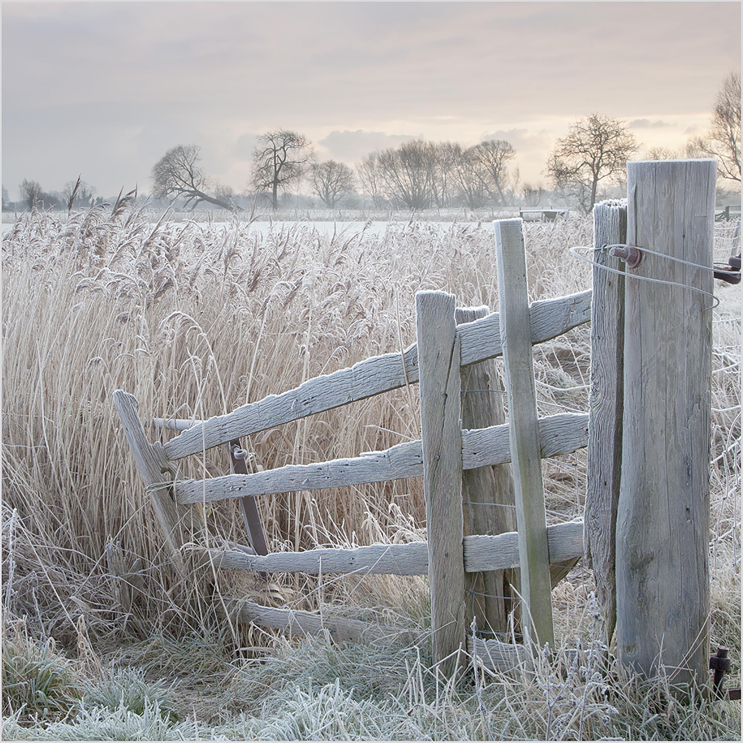 Frosty Gate.jpg