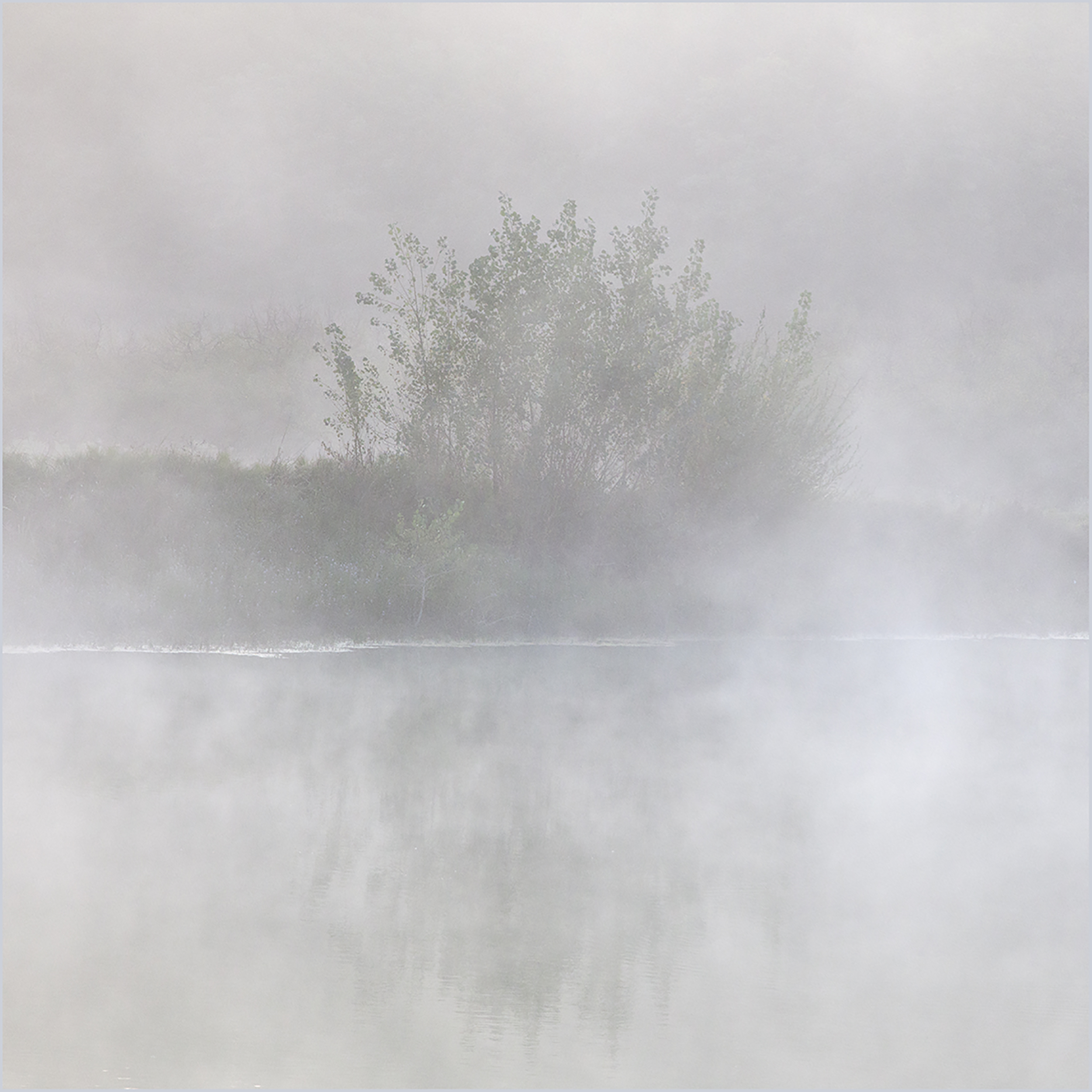 Early morning Mist 2.jpg