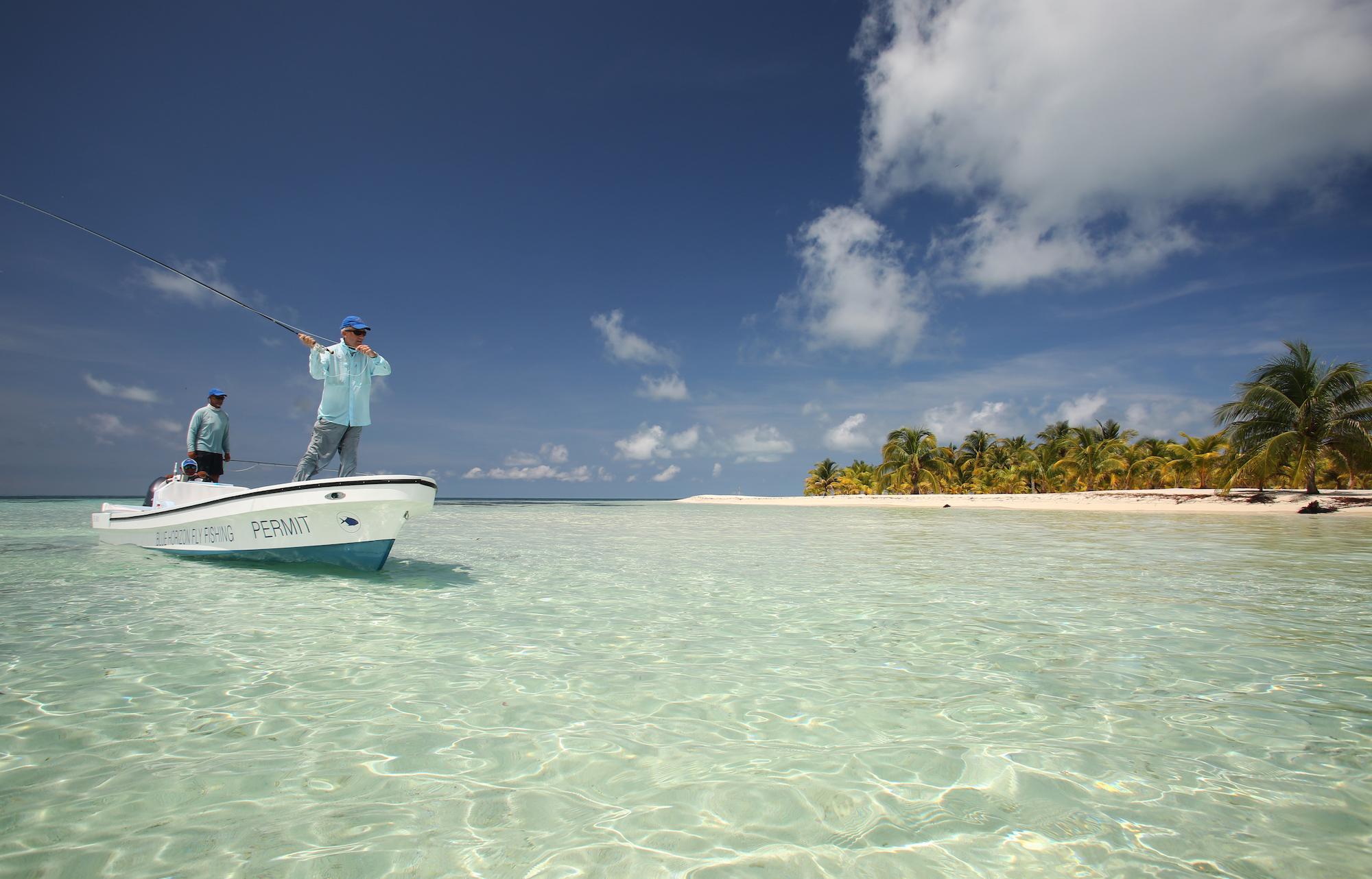 T Cay 17aaa 300 5666.jpg