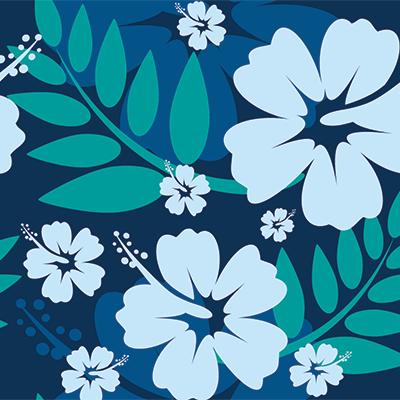 hawaiian-shirt-2.png