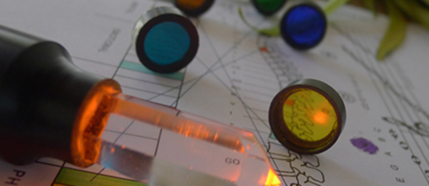 reflexology-colour.jpg