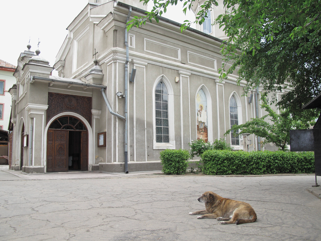 Dog-outside-church.png