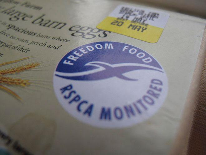 Freedom-Food.jpg