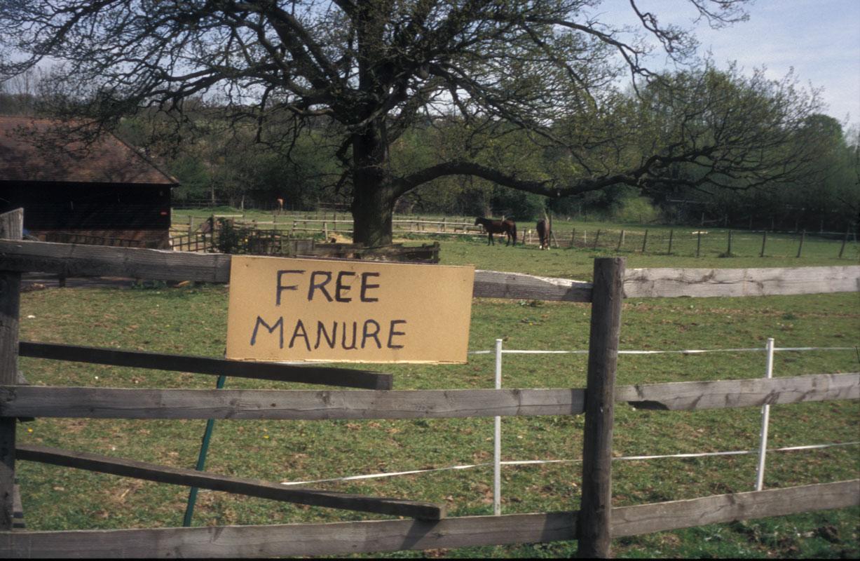 FREE-Manure.jpg