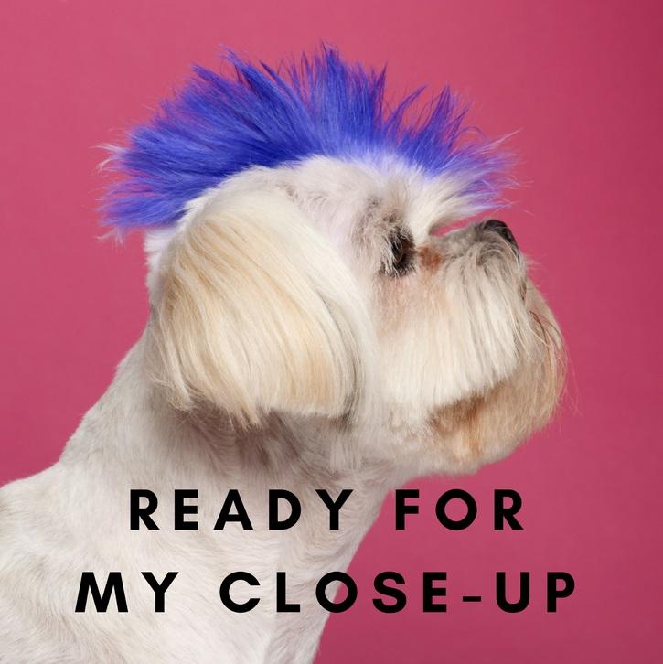 Ready%2Bfor%2Bmy%2Bcloseup.jpg