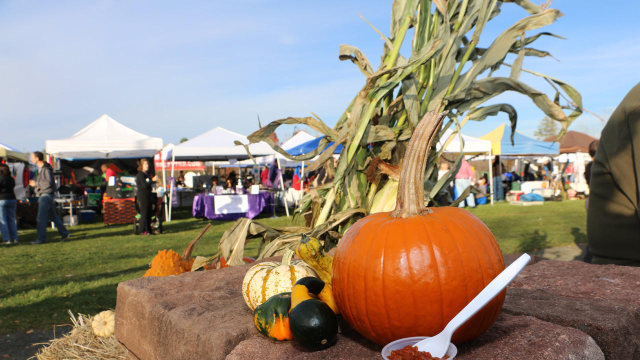 hc-pictures-spooktacular-chili-cookoff-2015110-024.jpg