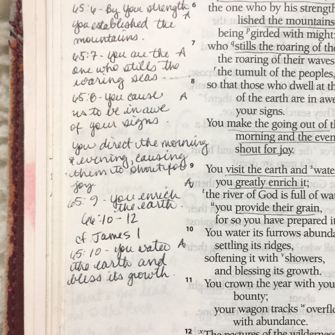 lw-1-adoration-in-psalms.png
